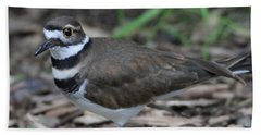 Killdeer Hand Towel by Dan Sproul