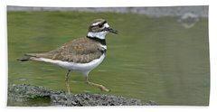 Killdeer Walking Hand Towel by Sharon Talson