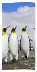King Penguins St Andrews Bay Hand Towel by Yva Momatiuk John Eastcott