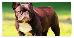 King's Frenchie - French Bulldog Hand Towel