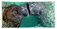 Kissing Manatees Near Harbour Island Hand Towel