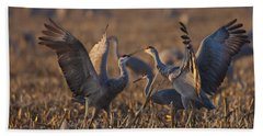 Kissing Sandhills Hand Towel
