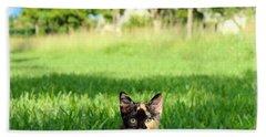 Hand Towel featuring the photograph Kitten by Carsten Reisinger