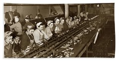 Ladies Packing Sardines In One Pound Oval Cans In One Of The Over 20 Cannery's Circa 1948 Hand Towel
