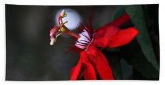 Hand Towel featuring the photograph Lady Margaret - Passionflower  by Ramabhadran Thirupattur