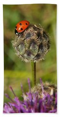 Ladybird Hand Towel by Ron Harpham