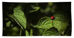 Hand Towel featuring the photograph Ladybug by Bradley R Youngberg