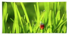 Ladybug In Grass Hand Towel by Carlos Caetano