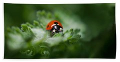 Ladybug On The Move Hand Towel