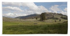 Hand Towel featuring the photograph Lamar Valley No. 2 by Belinda Greb