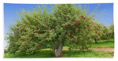 Large Apple Tree Bath Towel by Anthony Sacco
