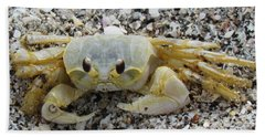 Bath Towel featuring the photograph Ghost Crab by Cynthia Guinn