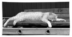 Bath Towel featuring the photograph Lazy Cat by Andrea Anderegg