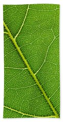 Hand Towel featuring the photograph Leaf Detail by Carsten Reisinger