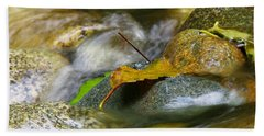 Leaves On The Rocks Hand Towel