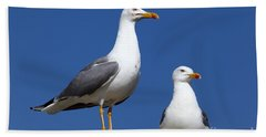 Lesser Black-backed Gulls Bath Towel