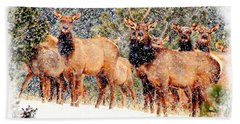 Let It Snow - Barbara Chichester Hand Towel by Barbara Chichester