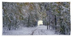 Bath Towel featuring the photograph Let It Snow by Felicia Tica