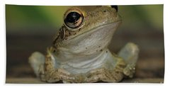 Let's Talk - Cuban Treefrog Hand Towel by Meg Rousher