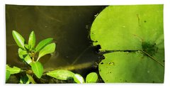 Lily Pad Hand Towel by Robyn King