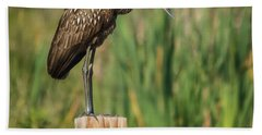 Limpkin Bath Towel