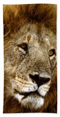 Lion 01 Bath Towel by Wally Hampton