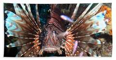Hand Towel featuring the photograph Lion Fish - En Garde by Amy McDaniel