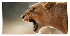 Lioness Displaying Dangerous Teeth In A Rainstorm Bath Towel