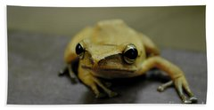Hand Towel featuring the photograph Little Frog by Michelle Meenawong