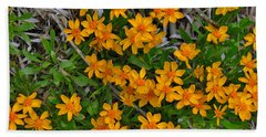Hand Towel featuring the photograph Little Sunflower In The Mountains by Janice Rae Pariza