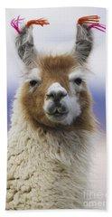 Llama In Bolivia Hand Towel