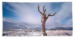 Lone Tree In The Snow Hand Towel