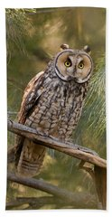 Long-eared Owl Hand Towel by Doug Herr