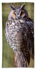 Hand Towel featuring the photograph Long Eared Owl by Joseph Skompski