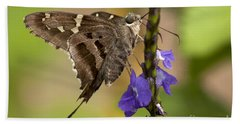 Hand Towel featuring the photograph Long-tailed Skipper Photo by Meg Rousher