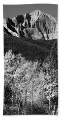 Longs Peak 14256 Ft Bath Towel by James BO  Insogna