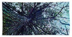 Look Up Through The Trees Hand Towel by Joy Nichols