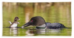 Loon Chick Excited For Breakfast Hand Towel