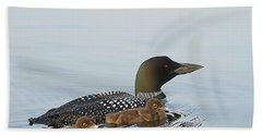 Loon Chicks Cruising With Mom Hand Towel