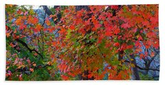 Lost Maples Fall Foliage Hand Towel