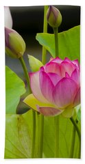 Lotus Flower Hand Towel