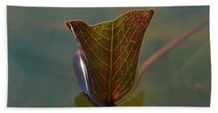 Hand Towel featuring the photograph Lotus Leaf by Michelle Meenawong