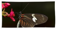 Lovely Longwing Hand Towel by Bryan Keil