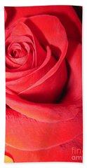 Luminous Red Rose 6 Hand Towel