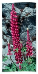 Lupine 1 Hand Towel by Andy Shomock