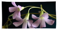 Macro Clover Hand Towel by Greg Allore