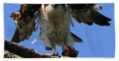 Mad Osprey Bath Towel