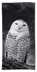 Hand Towel featuring the photograph Magic Beauty - Snowy Owl by Adam Olsen