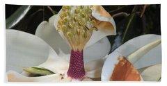Magnolia Magnicence  Hand Towel