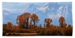 Majestic Backdrop Hand Towel by David Andersen